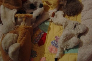 Pet Dreams (Bedroom, detail), 2005