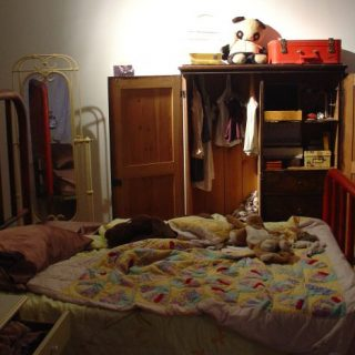 Pet Dreams (Bedroom), 2005