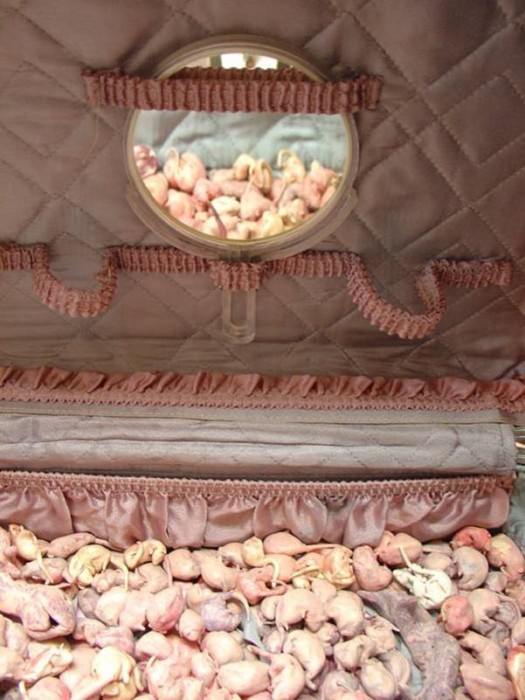 Baggage (Thrift store, detail), 2005