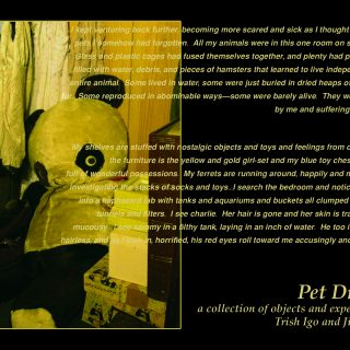 Pet Dreams, 2005