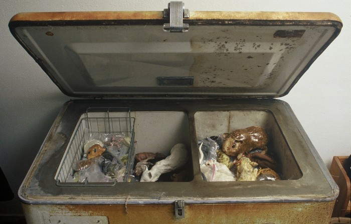 Freezer (Thrift store to Bedroom Transition, detail), 2005