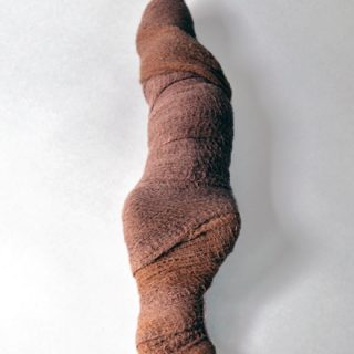 Squirrel Mummy, 2012